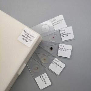 30-pieces-Prepared-Slides-of-typical-insects